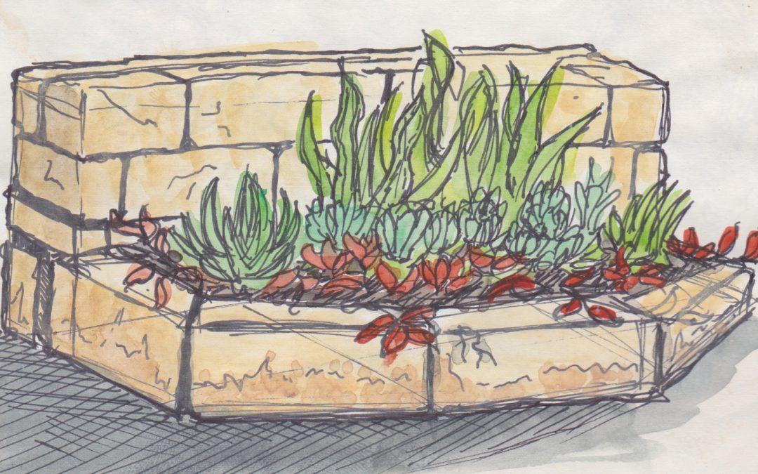 Planter Box Color Study